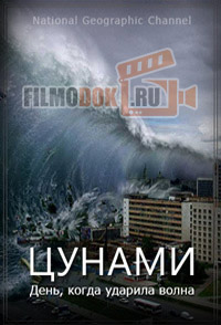 Цунами. День, когда ударила волна / Tsunami. The Day the Wave Struck / 2005