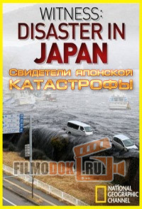 [HD] Свидетели японской катастрофы / National Geographic. Witness: Disaster in Japan / 2011