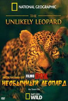 Необычный леопард / The Unlikely Leopard (2012, HD720, National Geographic)